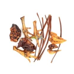 EXO TERRA filtr do wody w terrarium REPTI CLEAR