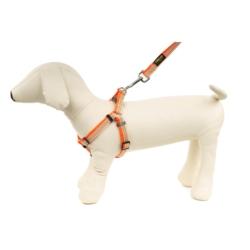 Nestor Pokarm dla małych gryzoni Owocowo-Warzywny
