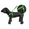 CHICO żwirek SILIKONOWY dla kota Compact Naturalny