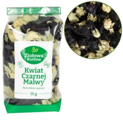 ARION Original Kitten