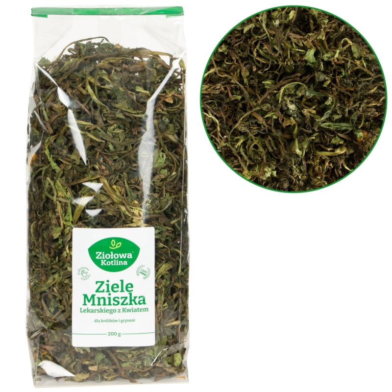 royal canin british shorthair kitten 10kg. Black Bedroom Furniture Sets. Home Design Ideas