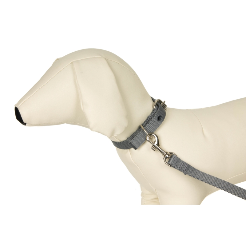 Purina DOG CHOW Mature Adult Lamb