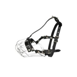 SUPER BENEK Pinio CYTRUS