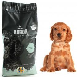 TRIXIE Szelki + Smycz do samochodu dla kota Czerwone