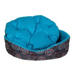Tropical CICHLID COLOR