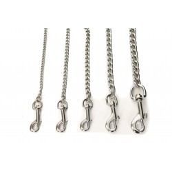 Tropical OVO-VIT