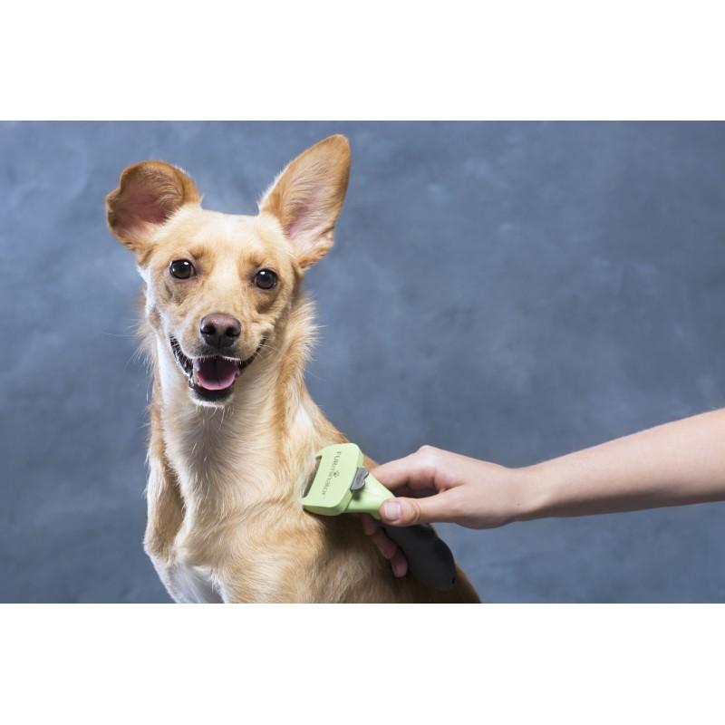 ROYAL CANIN Sterilised 37 10kg