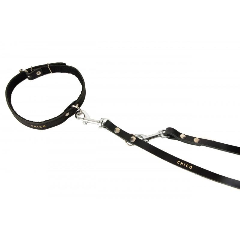 ROYAL CANIN Club adult CC