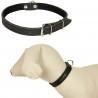 ROYAL CANIN Club adult SLIM