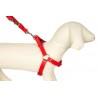 Kokos tłuszczowy SŁONECZNIKOWY przysmak dla ptaków