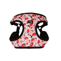TRIXIE Miska ceramiczna DLA GRYZONI kolorowa