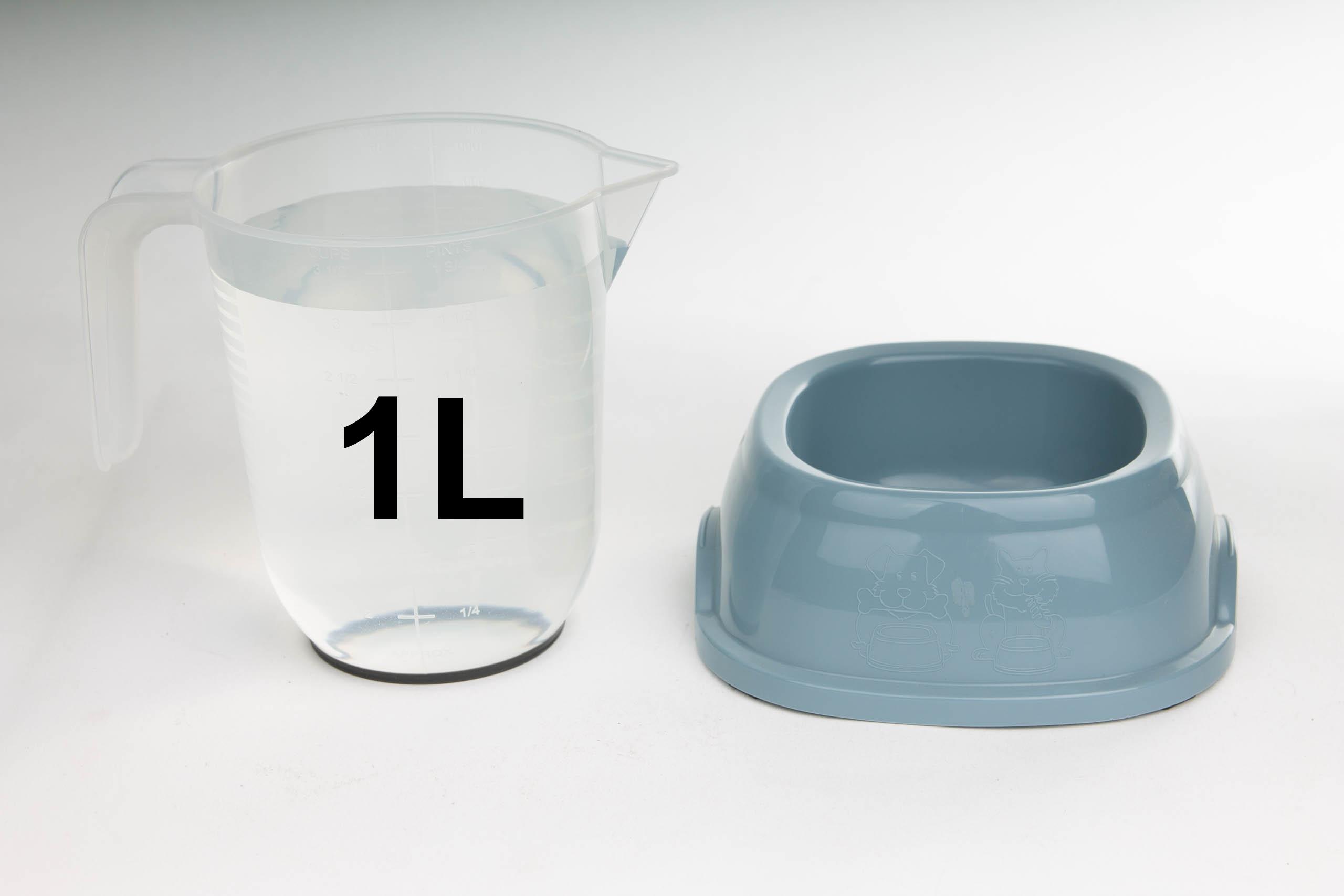 Jak duża miska dla małego psa lub kota?