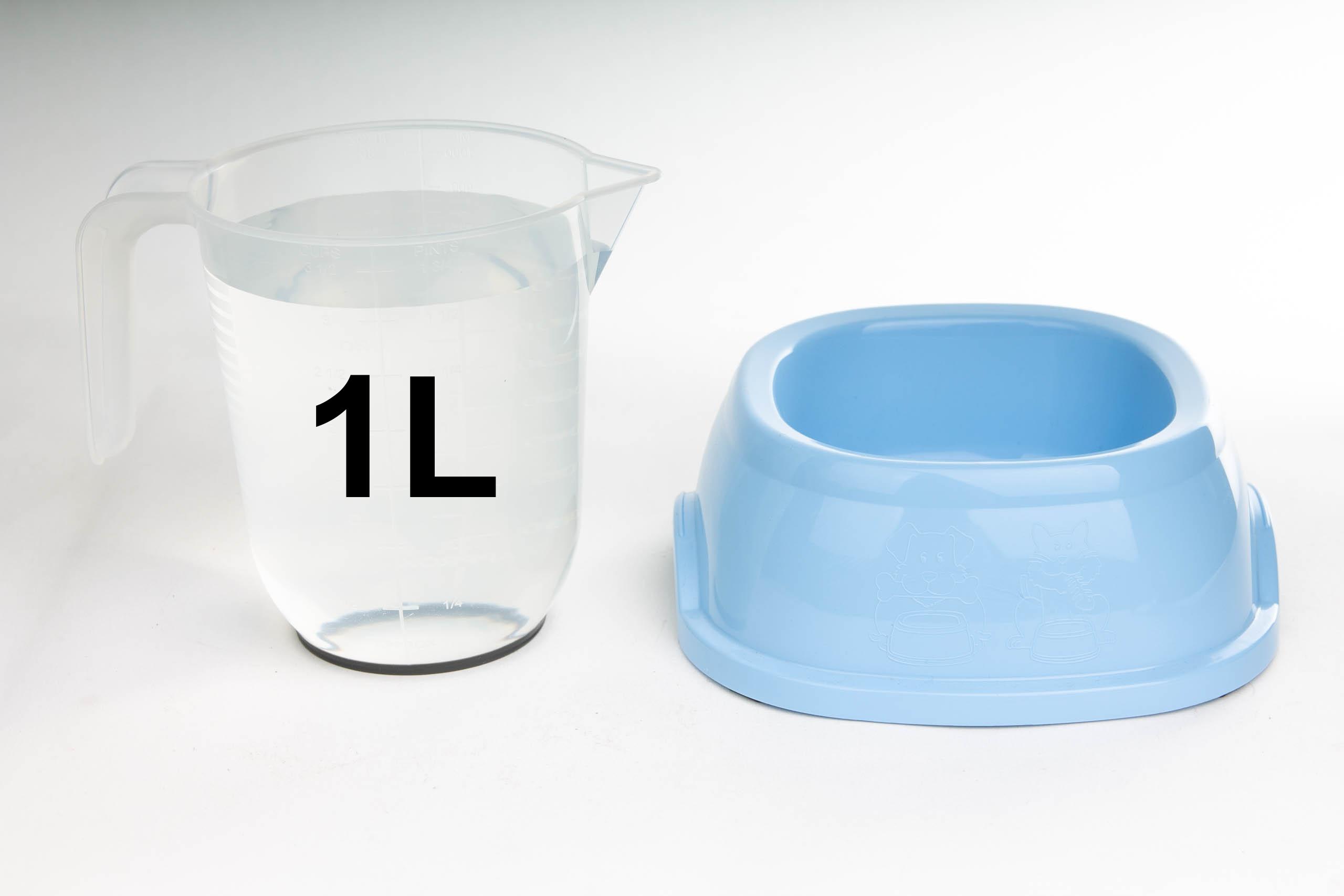 jak duża miska dla małego lub średniego psa lub kota?